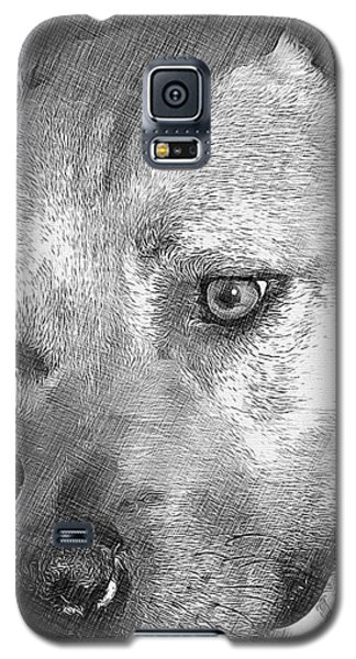 Lovely Dog Galaxy S5 Case