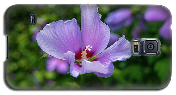 Lovely Hibiscus Galaxy S5 Case