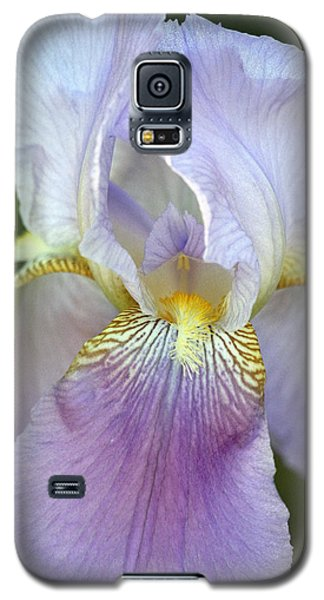 Lovely In Lavender Galaxy S5 Case by Sheila Brown