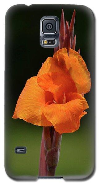 Lovely Iris Flower Galaxy S5 Case