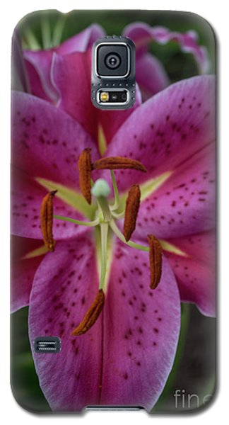 Lovely Lily Galaxy S5 Case