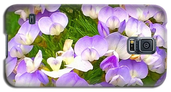 Color Galaxy S5 Case - Lovely #purple #flowers Beg Your by Shari Warren