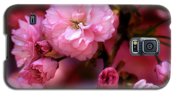 Lovely Spring Pink Cherry Blossoms Galaxy S5 Case by Shelley Neff