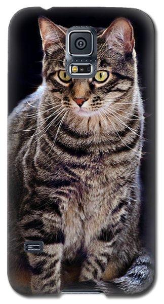 Loving Joseph Galaxy S5 Case by Kathy M Krause