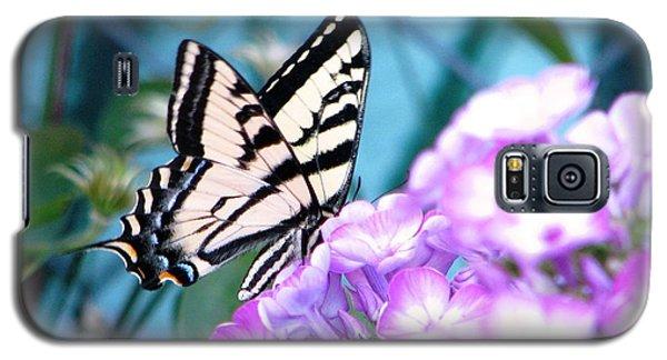 Galaxy S5 Case featuring the photograph Loving Phlox by Judyann Matthews