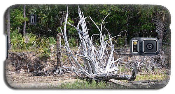 Galaxy S5 Case featuring the photograph Low Country Driftwood by Carol  Bradley