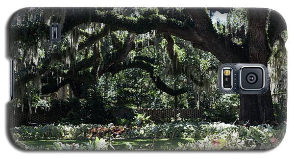Galaxy S5 Case featuring the photograph Low Country Series I by Suzanne Gaff