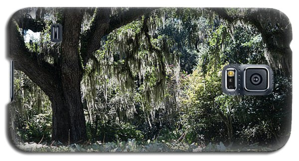 Galaxy S5 Case featuring the photograph Low Country Series II by Suzanne Gaff