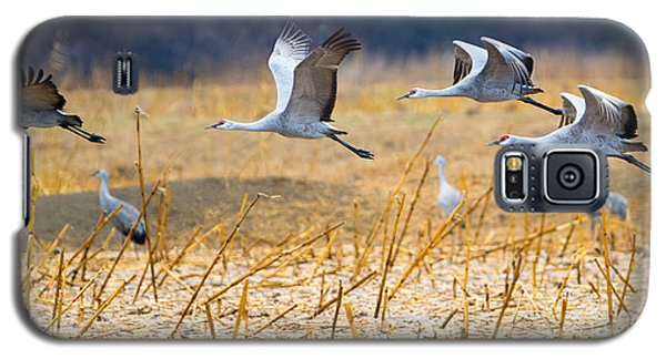Low Level Flyby Galaxy S5 Case by Mike Dawson