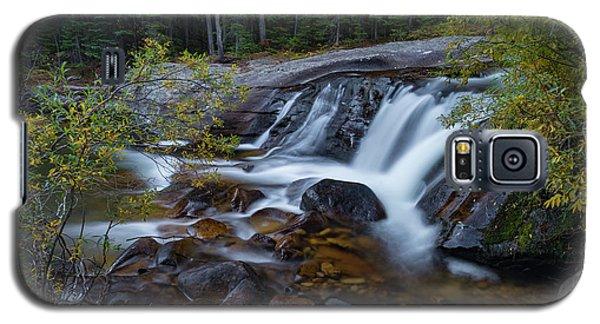 Lower Copeland Falls Galaxy S5 Case by Gary Lengyel