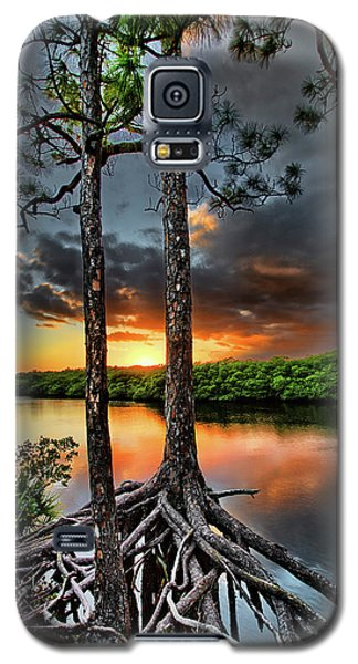 Loxachatchee Sunset Galaxy S5 Case