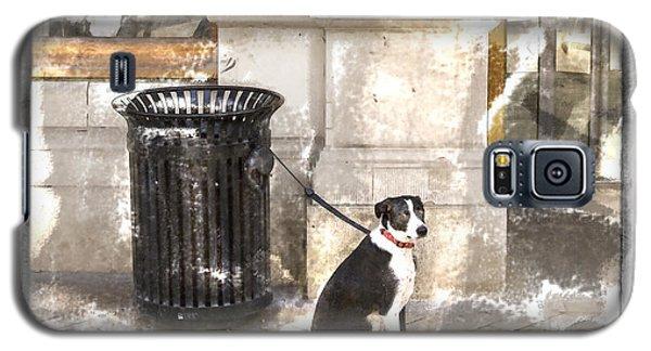 Loyal Dog Galaxy S5 Case