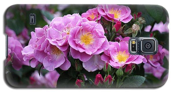 Lucky Floribunda Roses Galaxy S5 Case by Rona Black