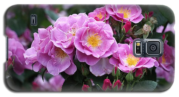 Lucky Floribunda Roses Galaxy S5 Case