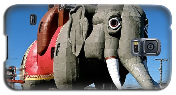Lucy The Elephant Galaxy S5 Case by Ira Shander