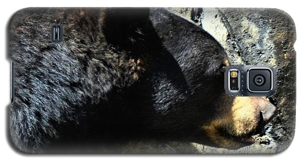 Lumbering Bear Galaxy S5 Case