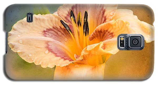 Galaxy S5 Case featuring the photograph Luminosity by Betty LaRue