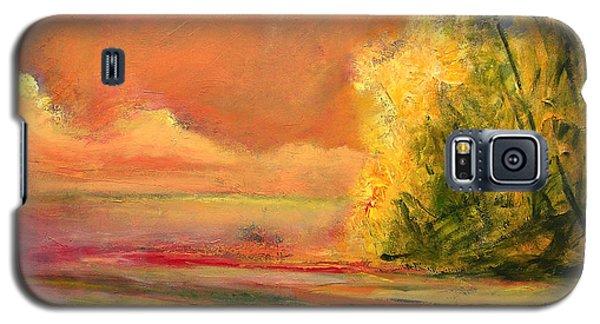 Luminous Sunset 2-16-06 Julianne Felton Galaxy S5 Case