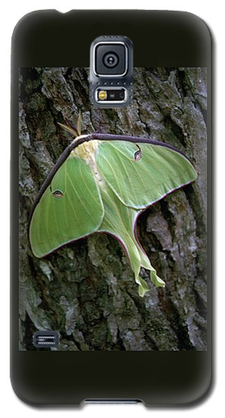 Luna Moth Galaxy S5 Case by Marie Hicks