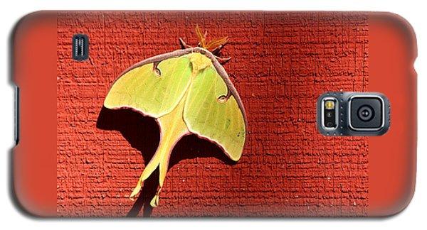 Luna Moth On Red Barn Galaxy S5 Case