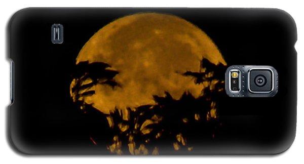 Lunar Crown Galaxy S5 Case