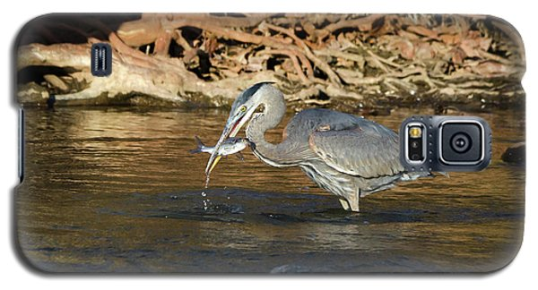 Galaxy S5 Case featuring the photograph Lunch On The Neuse River by George Randy Bass