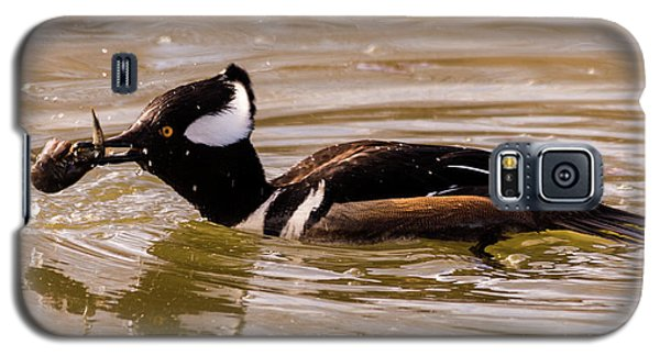 Galaxy S5 Case featuring the photograph Lunchtime For The Hooded Merganser by Randy Scherkenbach