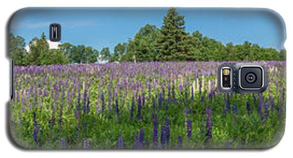 Lupine Field Galaxy S5 Case