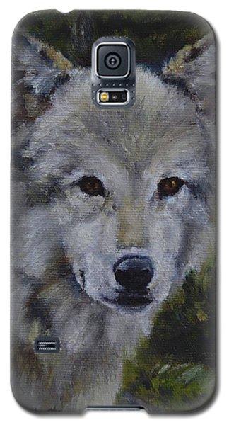 Lupine Gaze Galaxy S5 Case