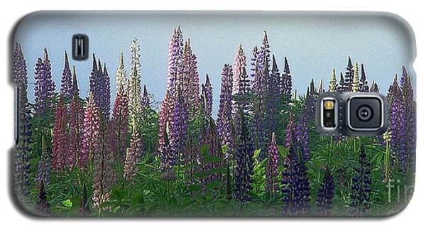 Lupine In Morning Light Galaxy S5 Case by Christopher Mace