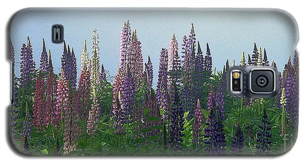 Galaxy S5 Case featuring the photograph Lupine In Morning Light by Christopher Mace