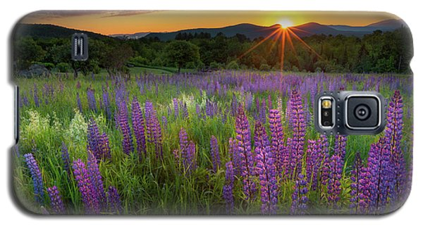 Galaxy S5 Case featuring the photograph Lupine Lumination by Bill Wakeley
