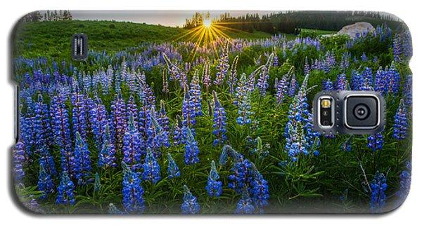 Lupine Meadow Galaxy S5 Case