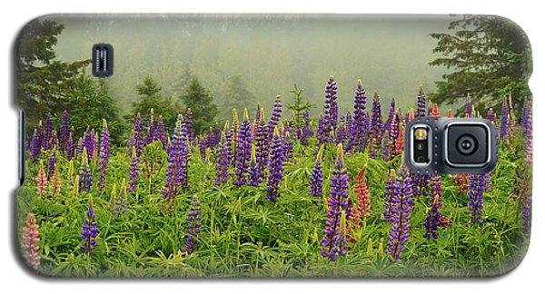 Lupins In The Mist Galaxy S5 Case
