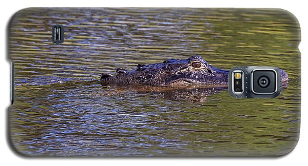 Lurking Alligator Galaxy S5 Case
