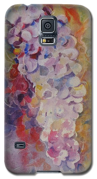 Luscious Grapes Galaxy S5 Case by Mary Haley-Rocks