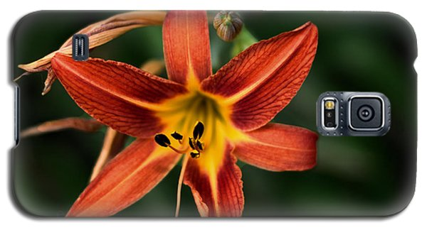 Luscious Tiger Lily Galaxy S5 Case