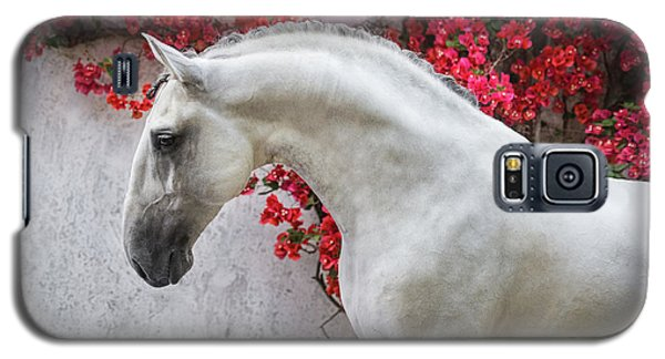 Lusitano Portrait In Red Flowers Galaxy S5 Case