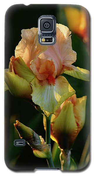 Luxurious Nature 6764 H_2 Galaxy S5 Case