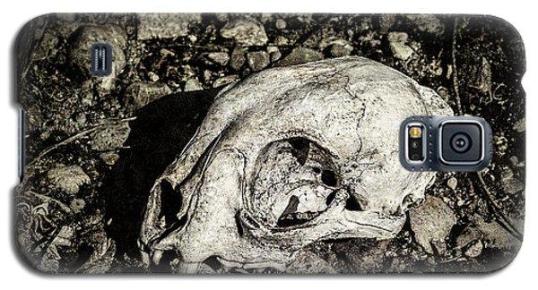 Lynx Skull Galaxy S5 Case
