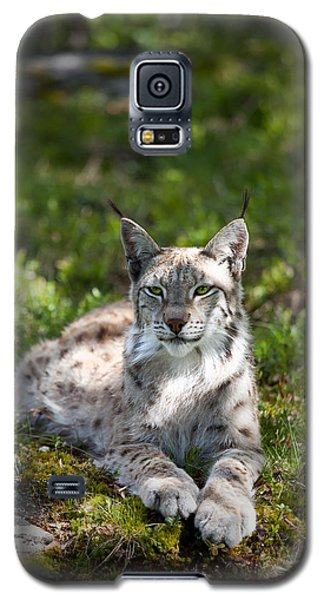 Galaxy S5 Case featuring the photograph Lynx by Yngve Alexandersson