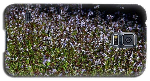 Lyre Leaf Sage Galaxy S5 Case by Barbara Bowen