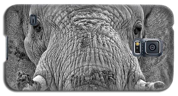 Mabu Up Close N Personal Galaxy S5 Case