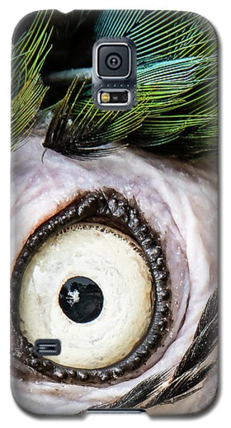 Macaw Up Close And Personal Galaxy S5 Case