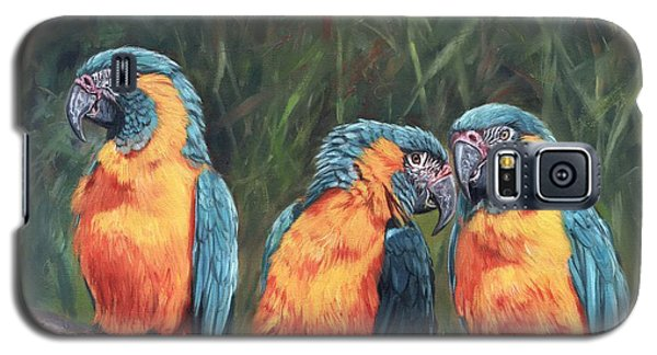 Macaw Galaxy S5 Case - Macaws by David Stribbling
