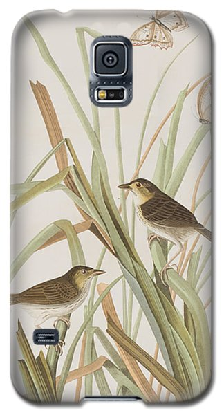Macgillivray's Finch  Galaxy S5 Case by John James Audubon