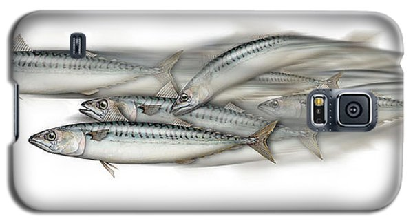 Galaxy S5 Case featuring the painting Mackerel School Of Fish - Scomber - Nautical Art - Seafood Art - Marine Art -game Fish by Urft Valley Art