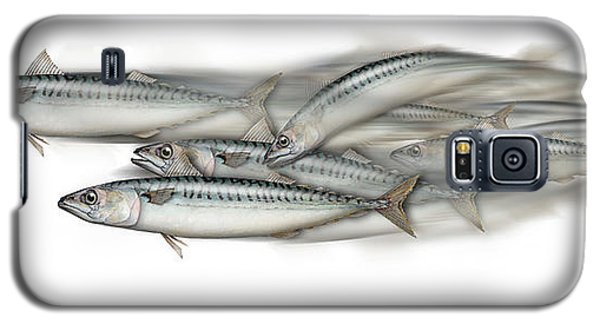 Mackerel School Of Fish - Scomber - Nautical Art - Seafood Art - Marine Art -game Fish Galaxy S5 Case
