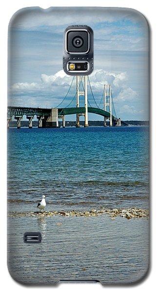 Galaxy S5 Case featuring the photograph Mackinac Bridge Private Seagull Beach by LeeAnn McLaneGoetz McLaneGoetzStudioLLCcom