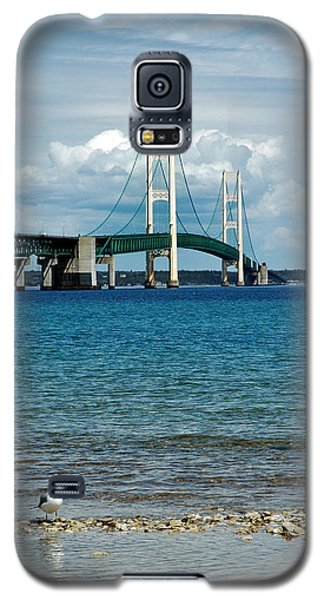 Galaxy S5 Case featuring the photograph Mackinac Bridge With Seagull by LeeAnn McLaneGoetz McLaneGoetzStudioLLCcom